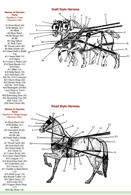 Mule Harness Parts Diagram - Electrical Drawing Wiring Diagram •